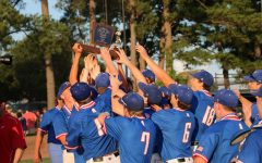 Slideshow: Baseball claims 17th State title