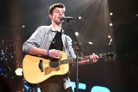 "Shawn Mendes Brings ""Something Big"" to the Fair"
