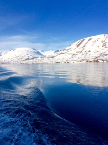 The Arctic waters. Photo courtesy of Ms. Norma Cox.