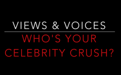 Views & Voices: Who's Your Celebrity Crush?