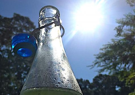 Keep hydrated during the summer swelter