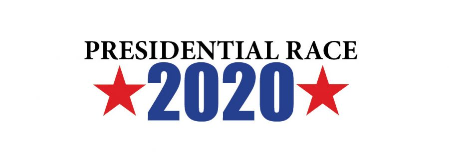 Your Guide to the 2020 Candidates