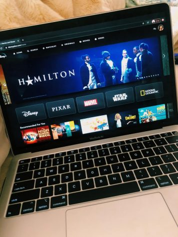 Hamilton on Disney+ Picture by Lilly Noble
